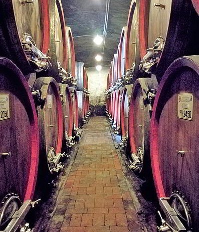casa-vacanze-chianti-best-house-dintorni-cantine-botti-vino