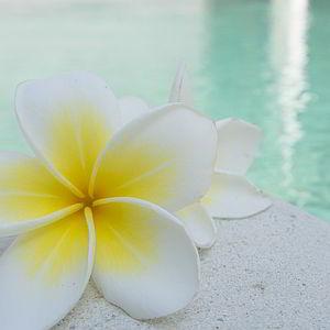 casa-vacanze-chianti-best-house-dintorni-relax-pulsante